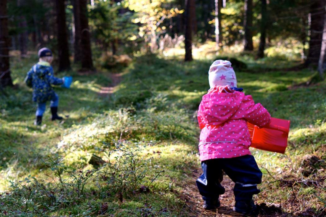 Barnen i skogen 4