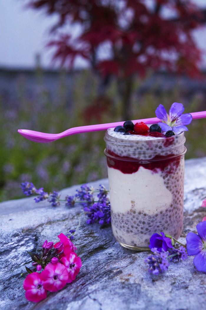 chia-trifle-2