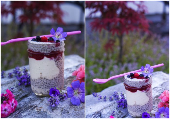 chia-trifle-4
