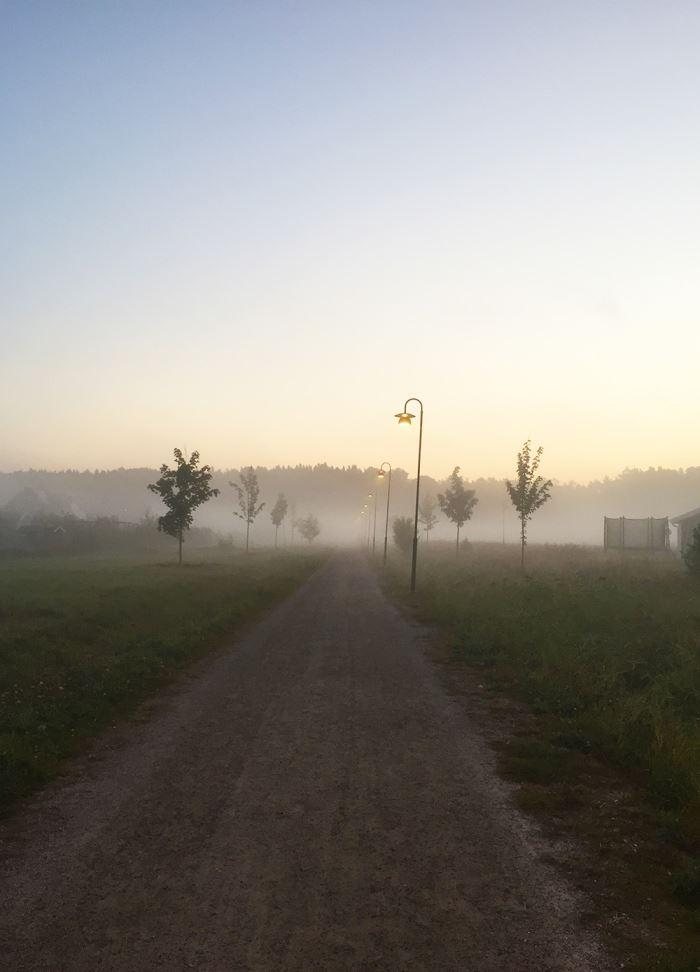 morgonlopning-dimma-3