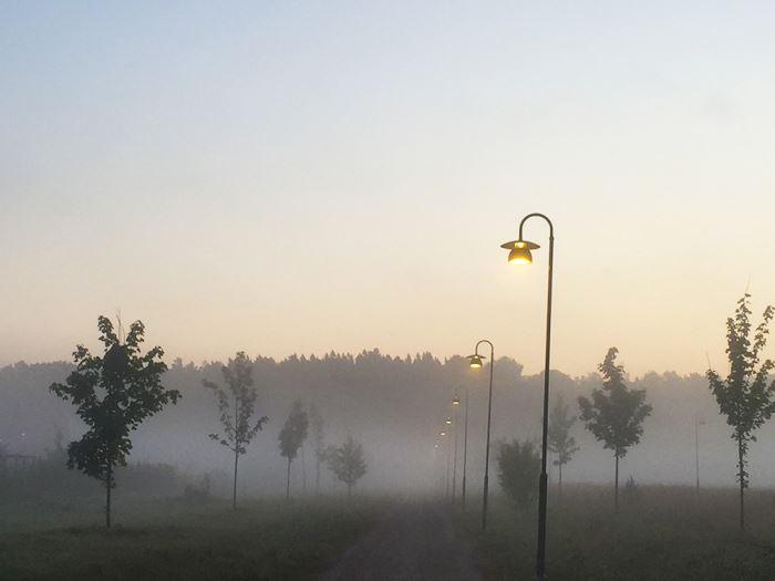morgonlopning-dimma-4