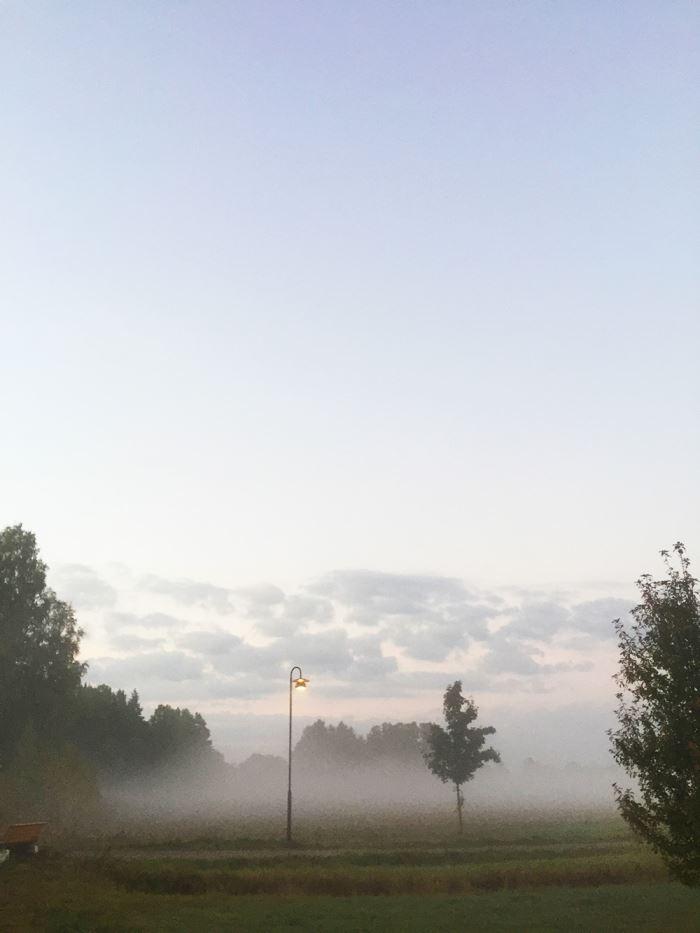 morgonlopning-dimma-5