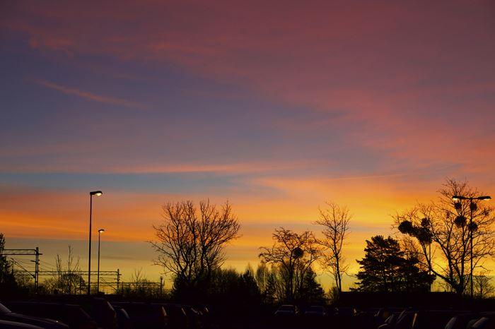 Januarimorgon soluppgång