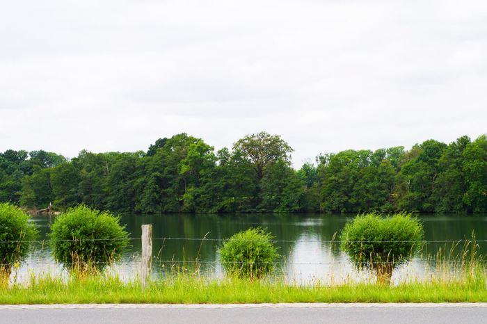 Cykling längs med vattnet