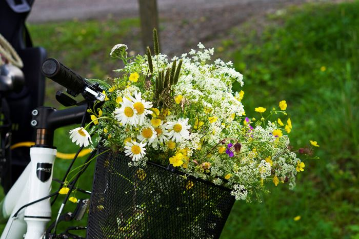 blommor i cykelkorg
